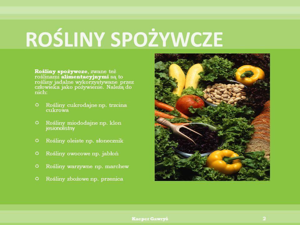 Rośliny spożywcze, zwane też roślinami alimentacyjnymi są to rośliny jadalne wykorzystywane przez człowieka jako pożywienie.