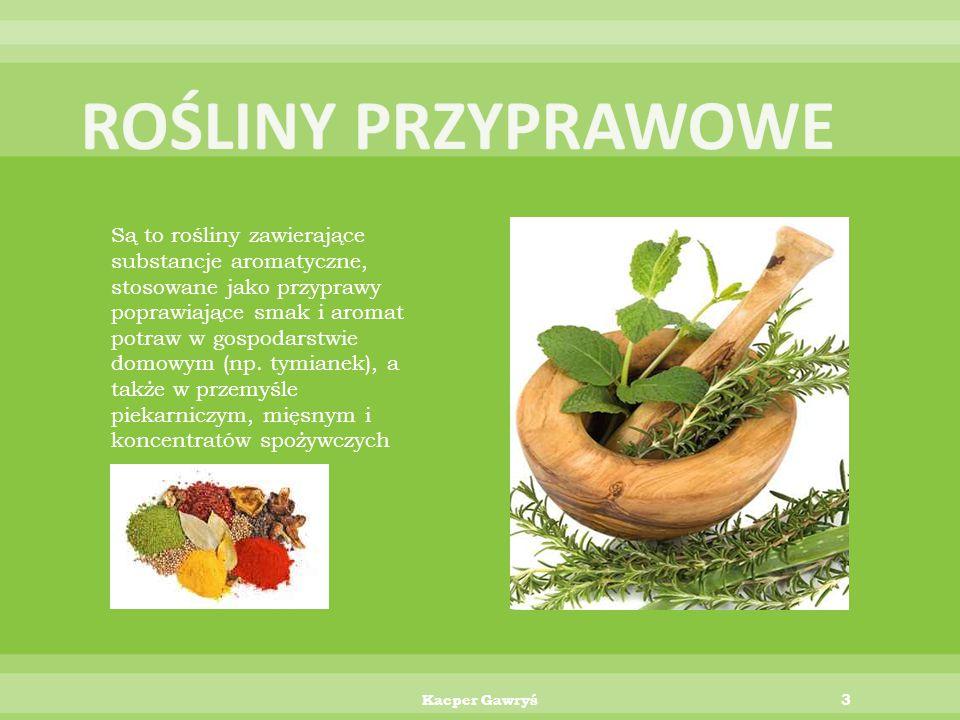 Rośliny spożywcze, zwane też roślinami alimentacyjnymi są to rośliny jadalne wykorzystywane przez człowieka jako pożywienie. Należą do nich:  Rośliny