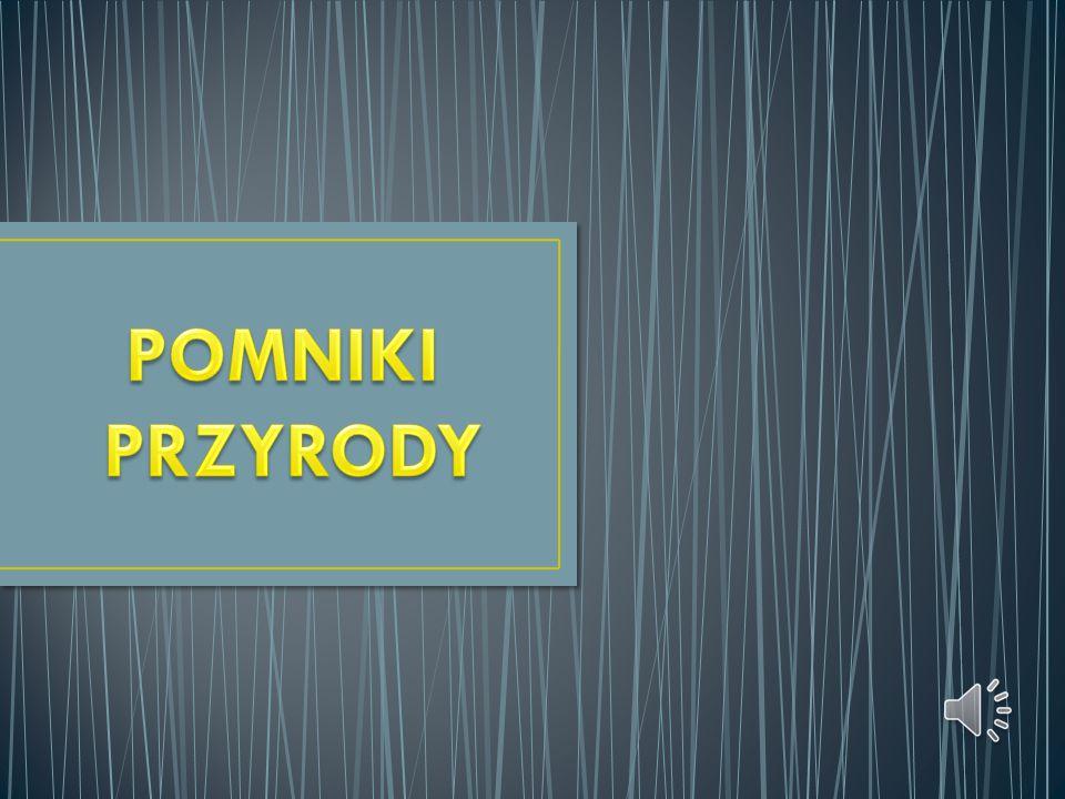 Pomnik przyrody – prawnie chroniony twór przyrody, szczególnie cenny ze względów naukowych, zabytkowych, kulturowych i innych Aktualny wzór oznaczenia pomnika przyrody w Polsce