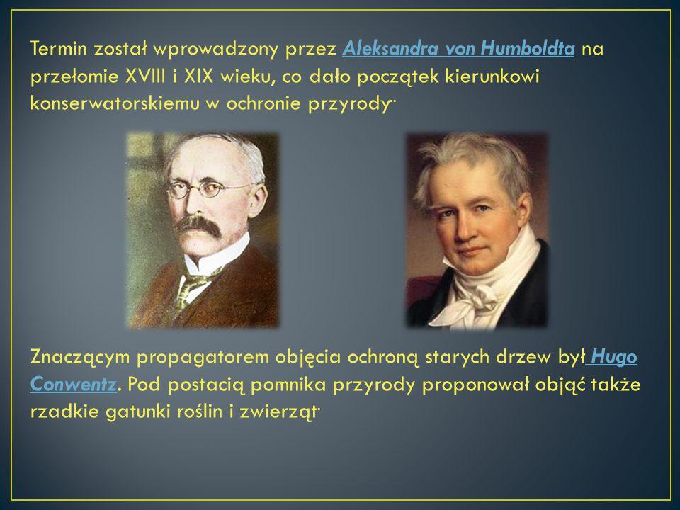 Termin został wprowadzony przez Aleksandra von Humboldta na przełomie XVIII i XIX wieku, co dało początek kierunkowi konserwatorskiemu w ochronie przy