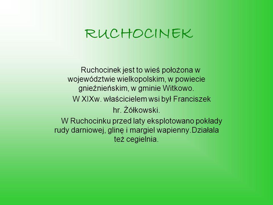 RUCHOCINEK Ruchocinek jest to wieś położona w województwie wielkopolskim, w powiecie gnieźnieńskim, w gminie Witkowo.