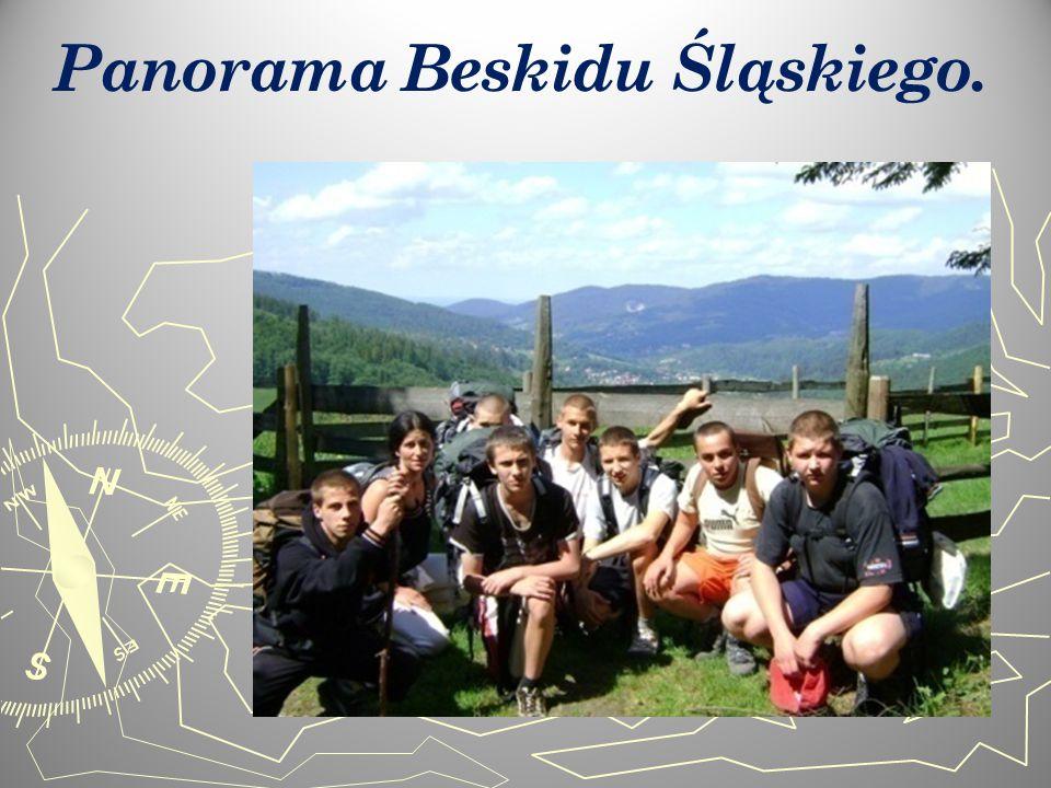 Panorama Beskidu Śląskiego.