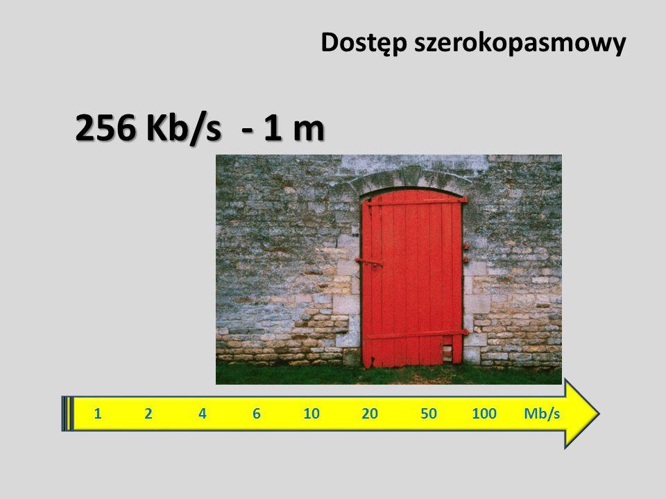 Dostęp szerokopasmowy 1 2 4 6 10 20 50 100 Mb/s 256 Kb/s - 1 m