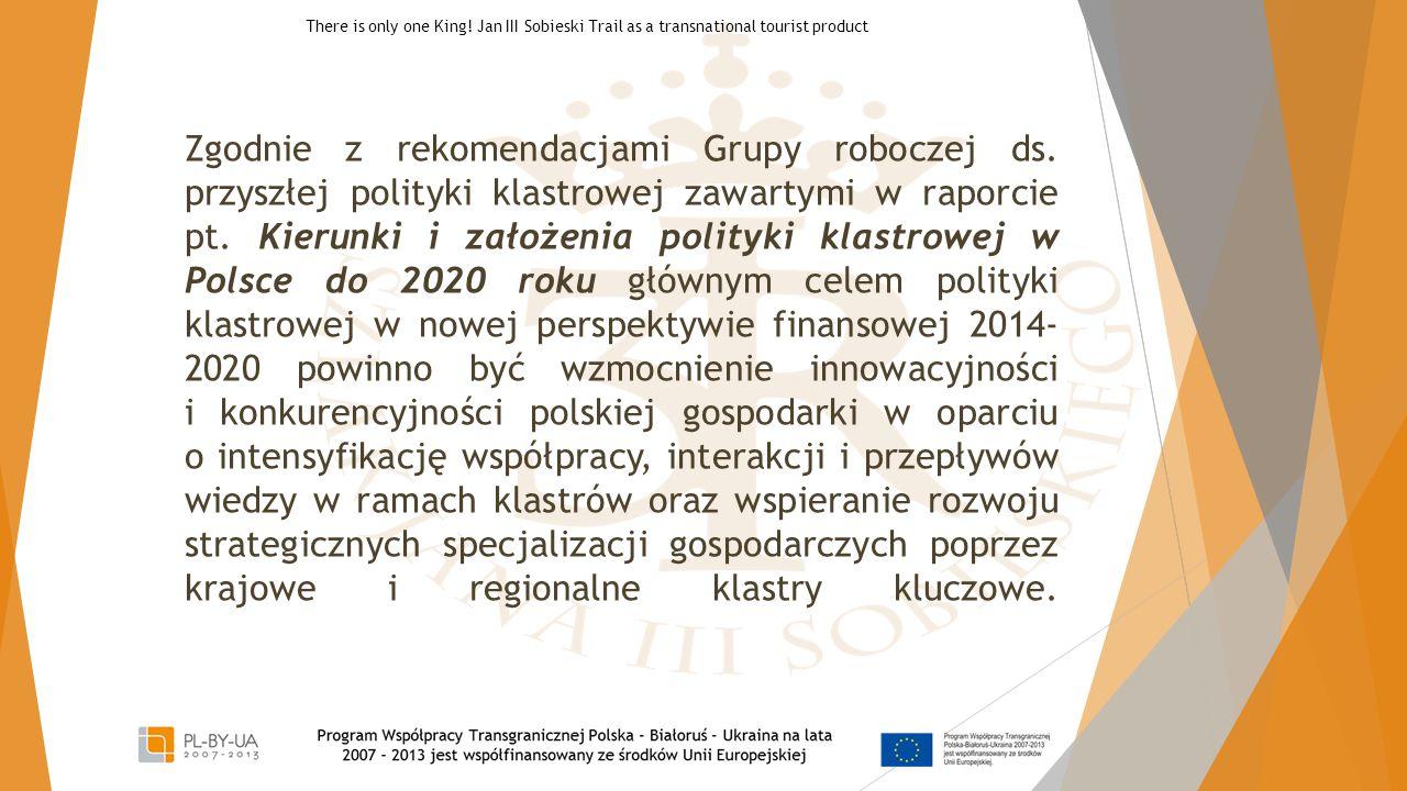 Zgodnie z rekomendacjami Grupy roboczej ds. przyszłej polityki klastrowej zawartymi w raporcie pt. Kierunki i założenia polityki klastrowej w Polsce d