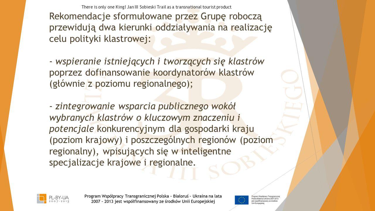 Rekomendacje sformułowane przez Grupę roboczą przewidują dwa kierunki oddziaływania na realizację celu polityki klastrowej: - wspieranie istniejących