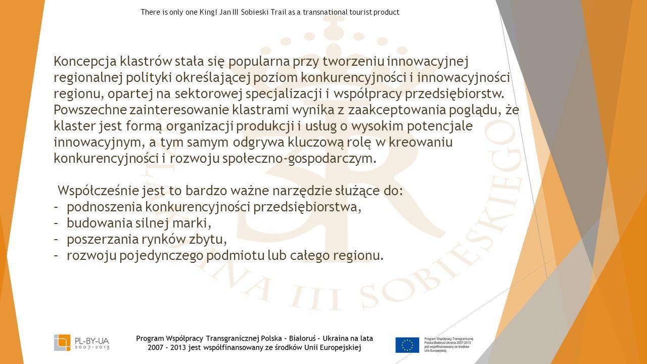 Koncepcja klastrów stała się popularna przy tworzeniu innowacyjnej regionalnej polityki określającej poziom konkurencyjności i innowacyjności regionu,