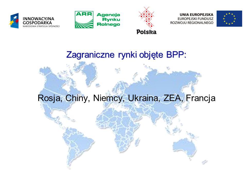 Zagraniczne rynki objęte BPP: Zagraniczne rynki objęte BPP: Rosja, Chiny, Niemcy, Ukraina, ZEA, Francja