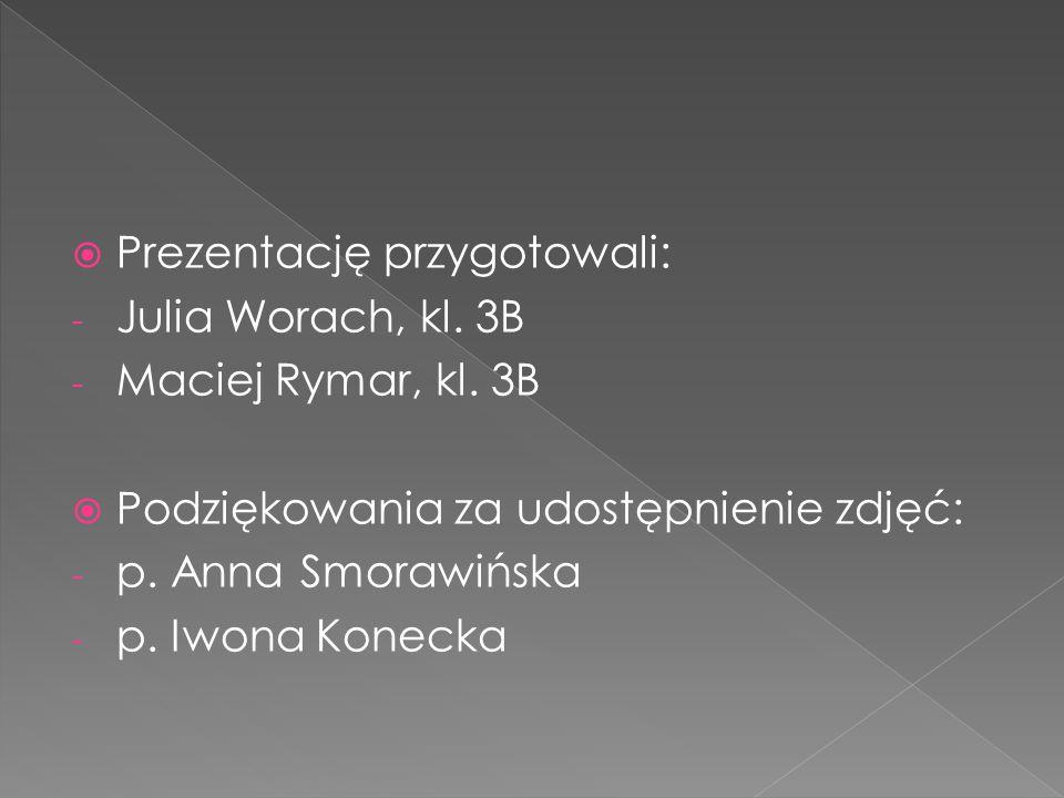 Prezentację przygotowali: - Julia Worach, kl.3B - Maciej Rymar, kl.