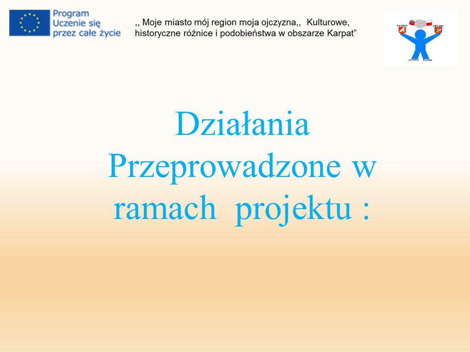 Działania Przeprowadzone w ramach projektu :