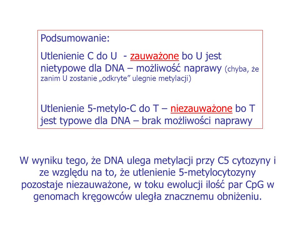 """Podsumowanie: Utlenienie C do U - zauważone bo U jest nietypowe dla DNA – możliwość naprawy (chyba, że zanim U zostanie """"odkryte"""" ulegnie metylacji) U"""