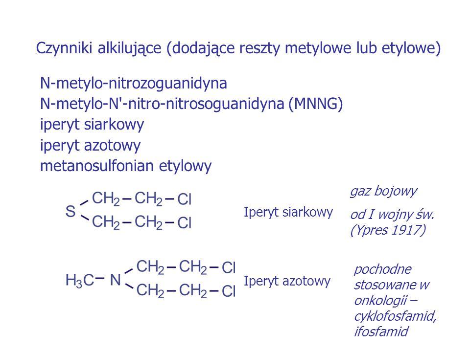 Czynniki alkilujące (dodające reszty metylowe lub etylowe) N-metylo-nitrozoguanidyna N-metylo-N'-nitro-nitrosoguanidyna (MNNG) iperyt siarkowy iperyt