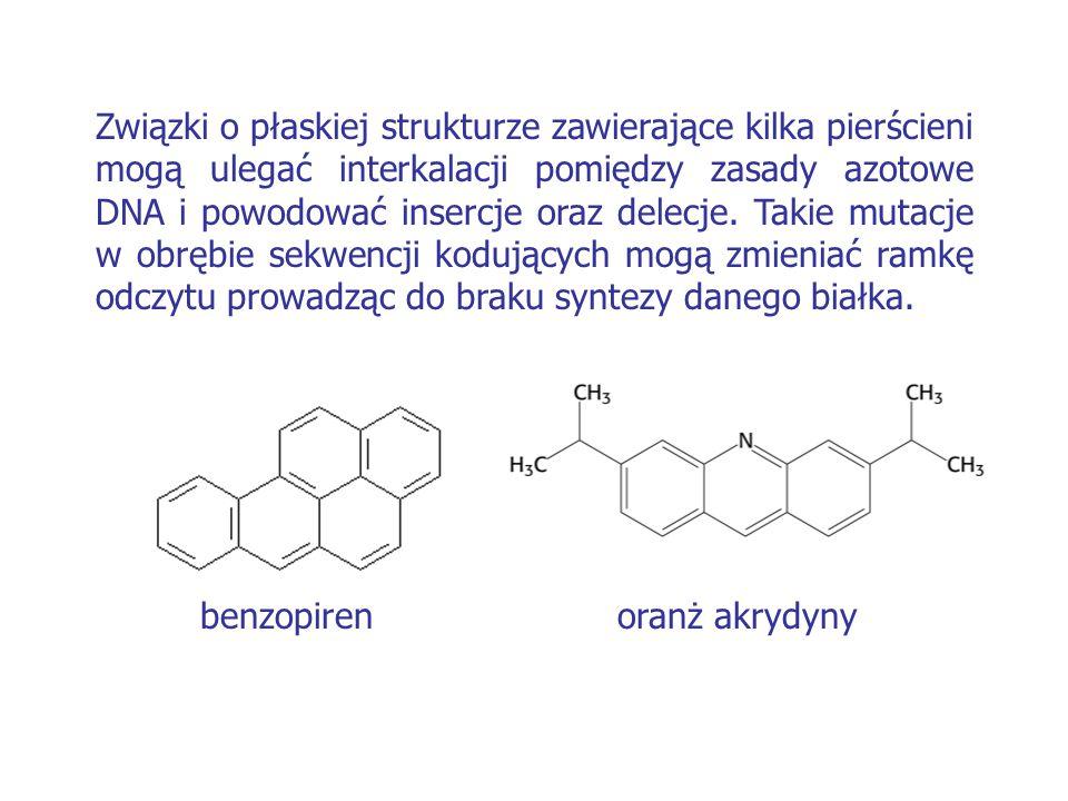 benzopiren oranż akrydyny Związki o płaskiej strukturze zawierające kilka pierścieni mogą ulegać interkalacji pomiędzy zasady azotowe DNA i powodować