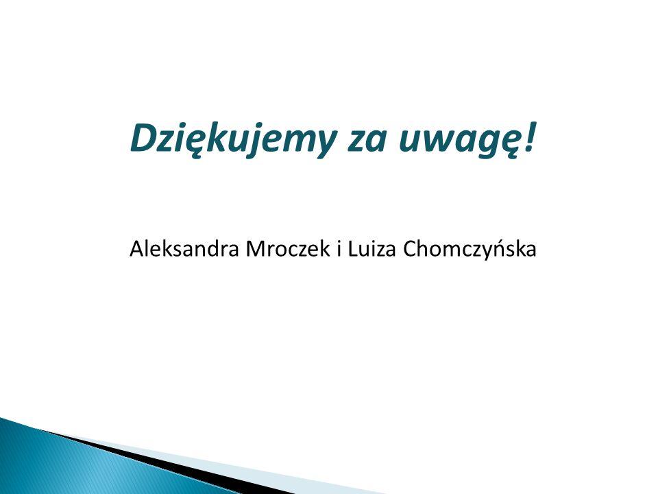 Dziękujemy za uwagę! Aleksandra Mroczek i Luiza Chomczyńska