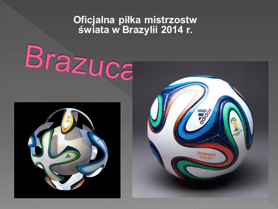 FULECO Oficjalna maskotka mistrzostw świata w Brazylii. Fuleco jest pancernikiem!!!