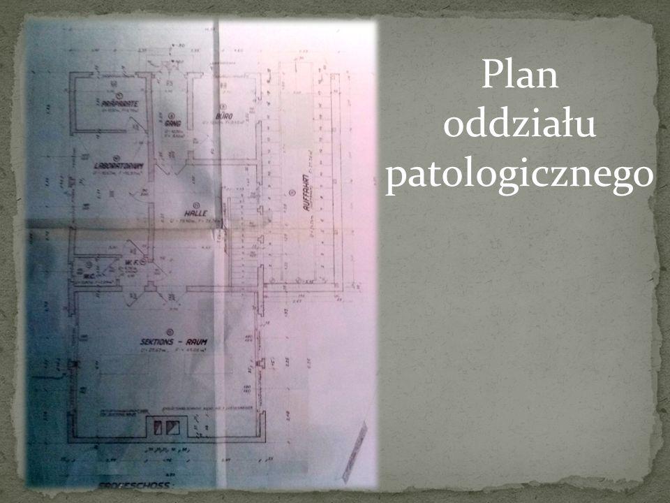 Plan oddziału patologicznego