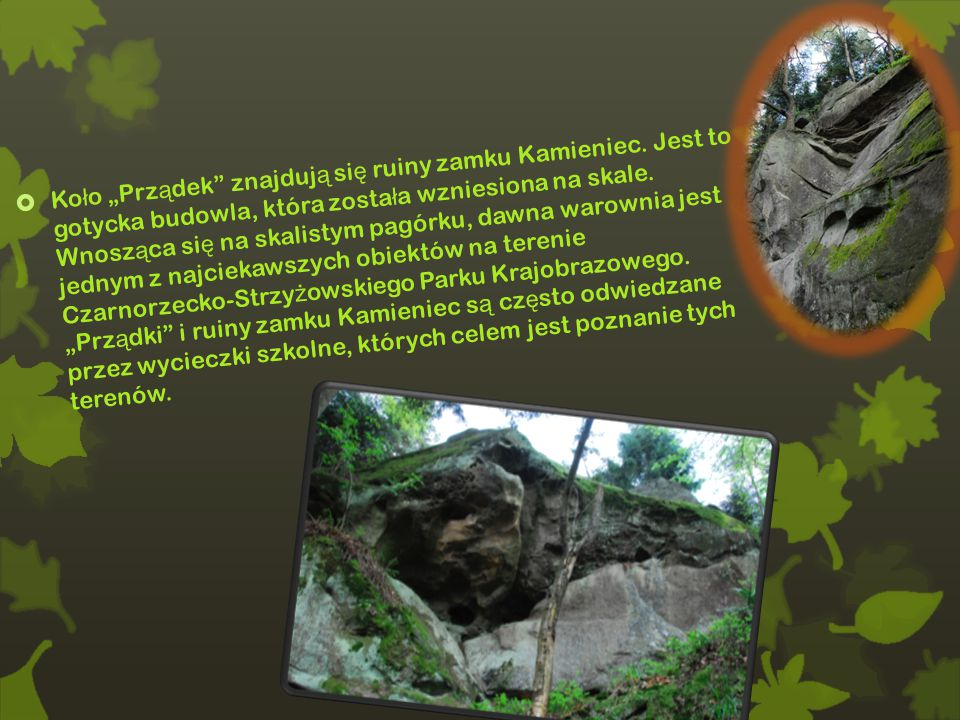 """ Ko ł o """"Prz ą dek znajduj ą si ę ruiny zamku Kamieniec."""