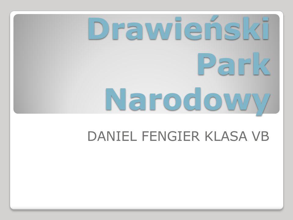 Drawieński Park Narodowy DANIEL FENGIER KLASA VB