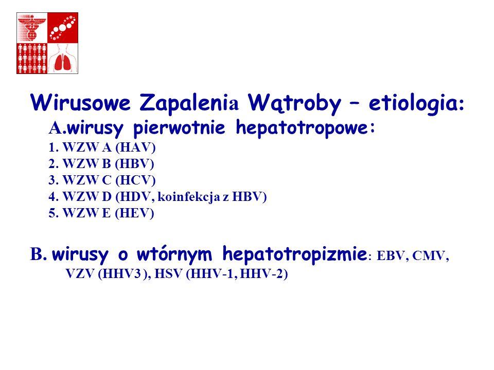Interpretacja markerów serologicznych HBV: ostre wzw B Markery wirusa: HBsAg+ HBeAg+ HBV DNA+ Odpowiedź serologiczna ustroju na zakażenie: Anty-HBs- Anty-HBe- Anty-HBc+ W ostrym zakażeniu Anty-HBc IgM +