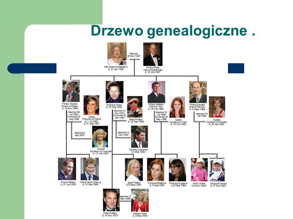 Drzewo genealogiczne.