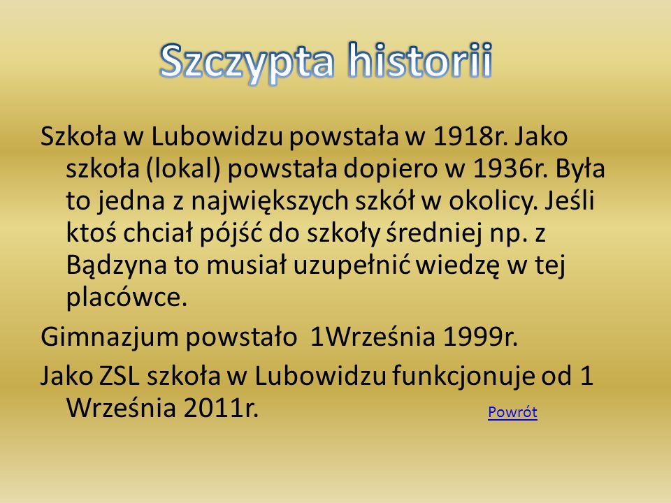 Szkoła w Lubowidzu powstała w 1918r. Jako szkoła (lokal) powstała dopiero w 1936r. Była to jedna z największych szkół w okolicy. Jeśli ktoś chciał pój