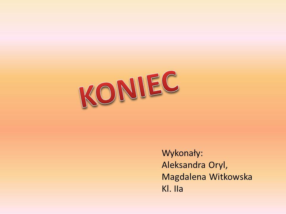 Wykonały: Aleksandra Oryl, Magdalena Witkowska Kl. IIa