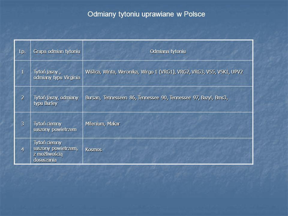 Odmiany tytoniu uprawiane w Polsce Lp. Grupa odmian tytoniu Odmiana tytoniu 1 Tytoń jasny, odmiany typu Virginia Wiślica, Winta, Weronika, Wirgo 1 (VR