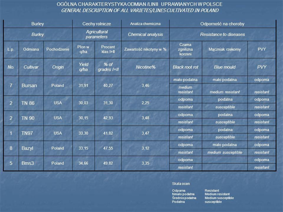 OGÓLNA CHARAKTERYSTYKA ODMIAN /LINII UPRAWIANYCH W POLSCE GENERAL DESCRIPTION OF ALL VARIETES/LINES CULTIVATED IN POLAND BurleyCechy rolnicze Analiza