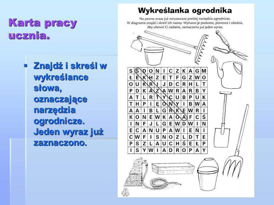 Karta pracy ucznia.  Znajdź i skreśl w wykreślance słowa, oznaczające narzędzia ogrodnicze. Jeden wyraz już zaznaczono.