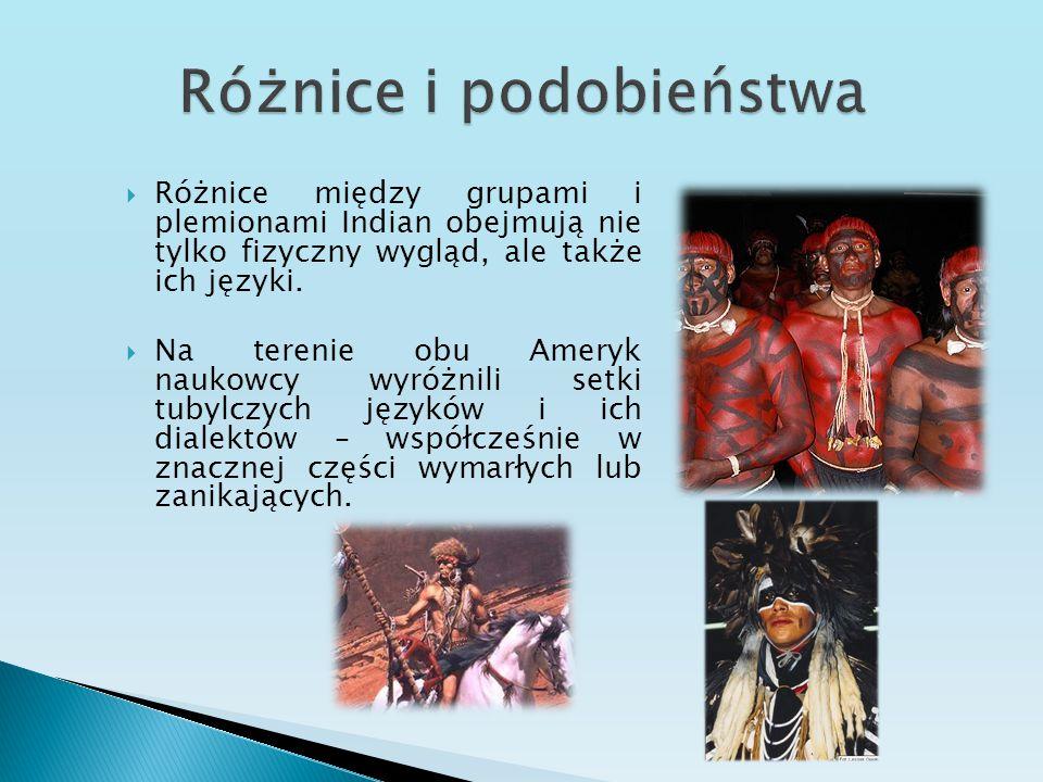  Różnice między grupami i plemionami Indian obejmują nie tylko fizyczny wygląd, ale także ich języki.  Na terenie obu Ameryk naukowcy wyróżnili setk