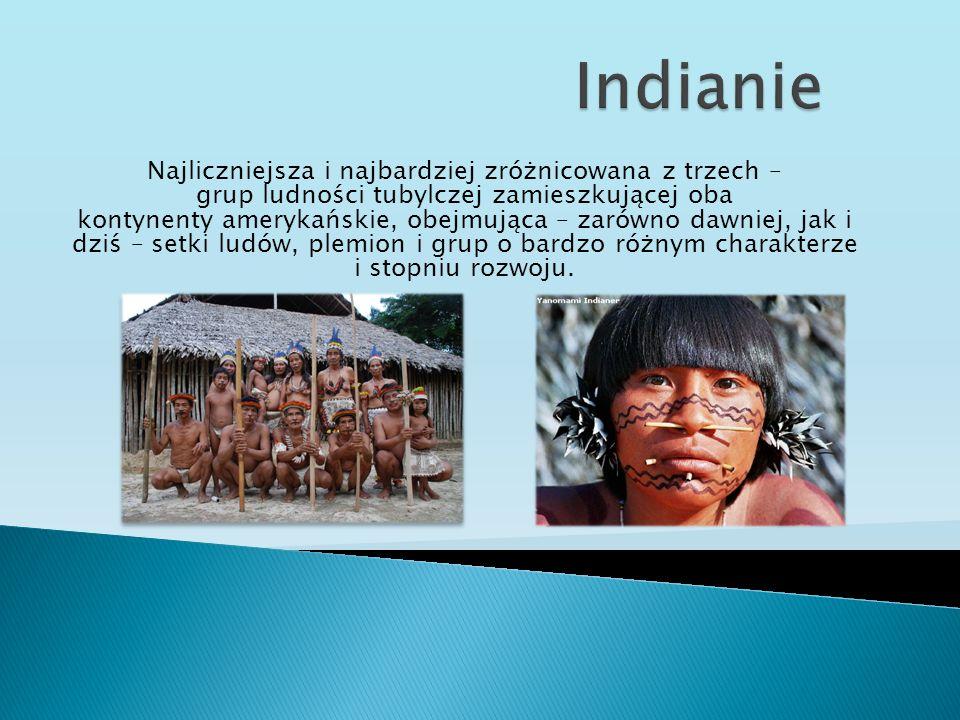 Najliczniejsza i najbardziej zróżnicowana z trzech – grup ludności tubylczej zamieszkującej oba kontynenty amerykańskie, obejmująca – zarówno dawniej,