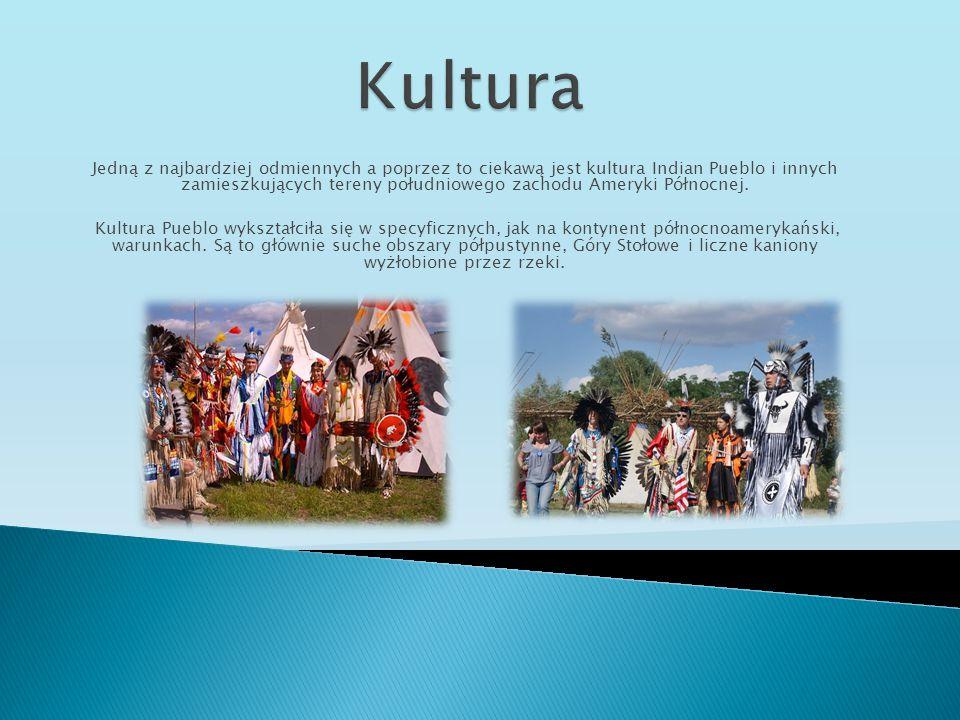 Jedną z najbardziej odmiennych a poprzez to ciekawą jest kultura Indian Pueblo i innych zamieszkujących tereny południowego zachodu Ameryki Północnej.
