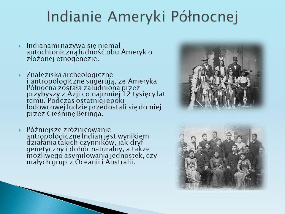  Indianami nazywa się niemal autochtoniczną ludność obu Ameryk o złożonej etnogenezie.