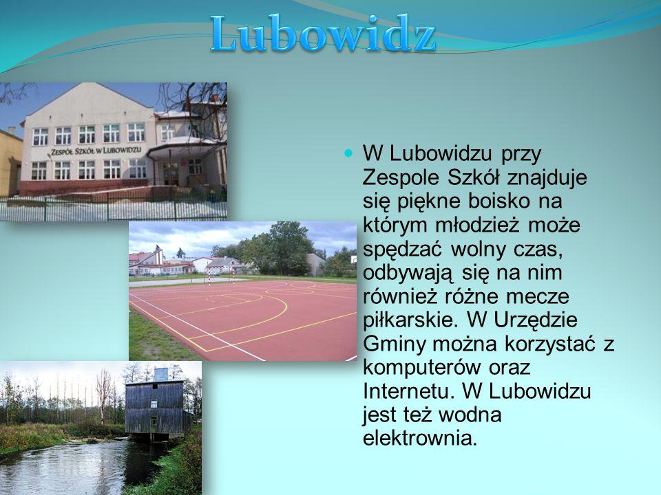 W Lubowidzu przy Zespole Szkół znajduje się piękne boisko na którym młodzież może spędzać wolny czas, odbywają się na nim również różne mecze piłkarskie.