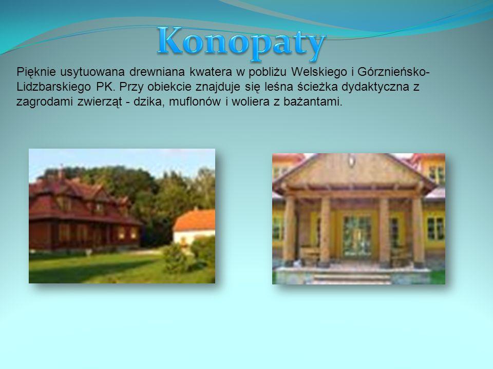 Pięknie usytuowana drewniana kwatera w pobliżu Welskiego i Górznieńsko- Lidzbarskiego PK.