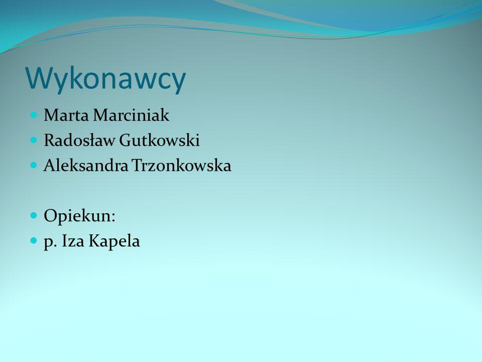 Wykonawcy Marta Marciniak Radosław Gutkowski Aleksandra Trzonkowska Opiekun: p. Iza Kapela