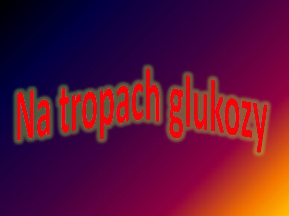 Glukoza jest cukrem prostym, który odgrywa największą rolę w organizmie człowieka.