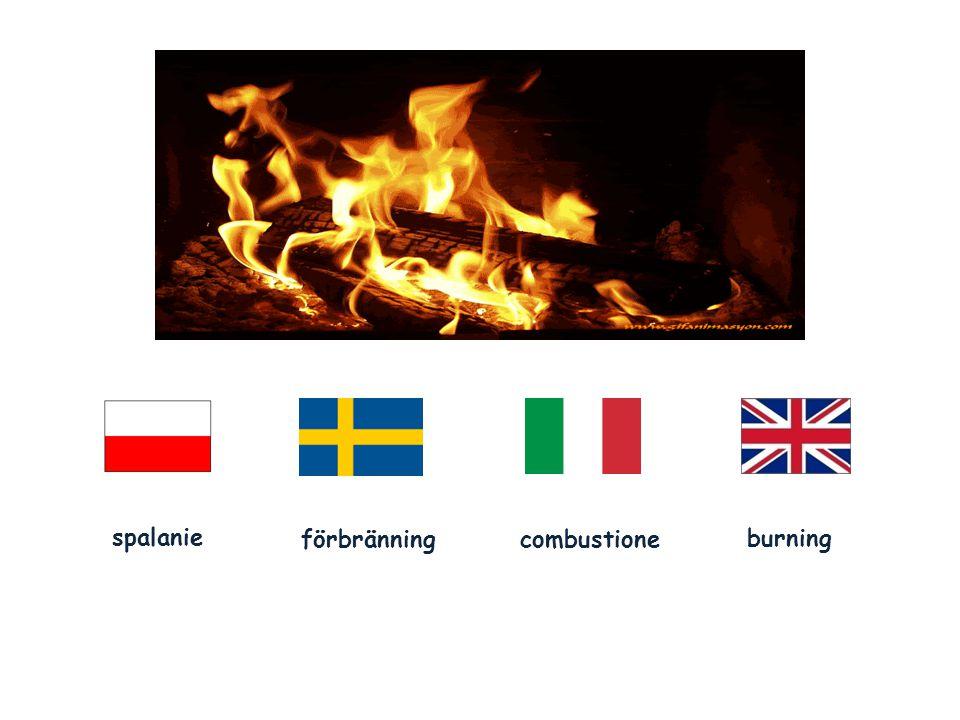 spalanie förbränningcombustione burning