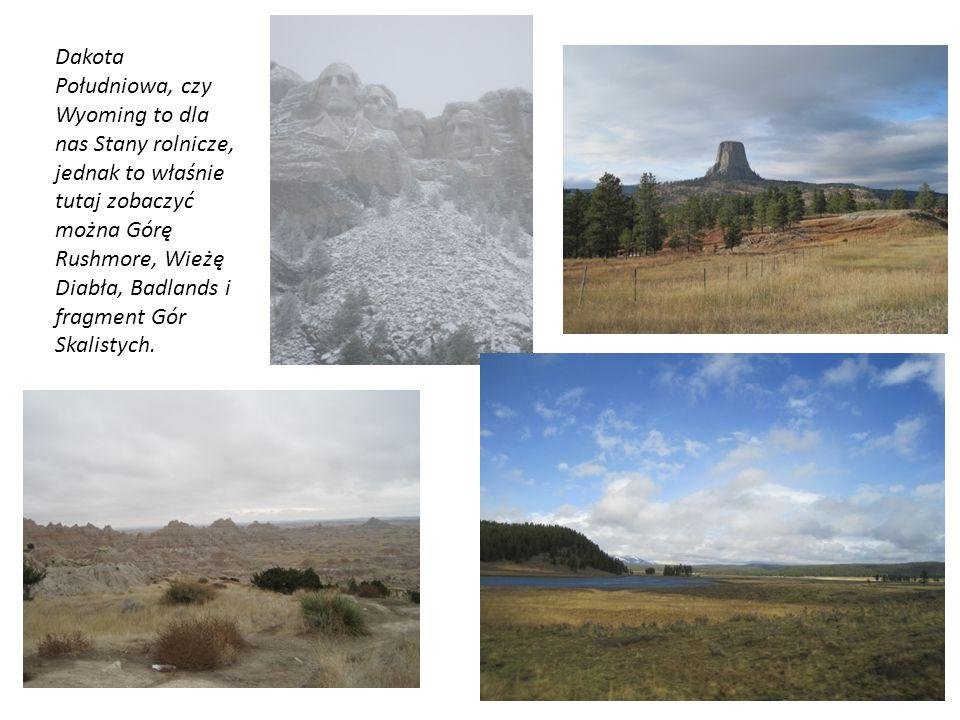 Dakota Południowa, czy Wyoming to dla nas Stany rolnicze, jednak to właśnie tutaj zobaczyć można Górę Rushmore, Wieżę Diabła, Badlands i fragment Gór