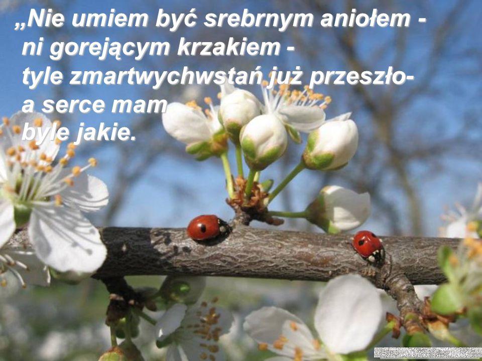 Może Wielkanocny wiersz księdza Jana Twardowskiego obudzi w nas to, co jeszcze uśpione…???!!!
