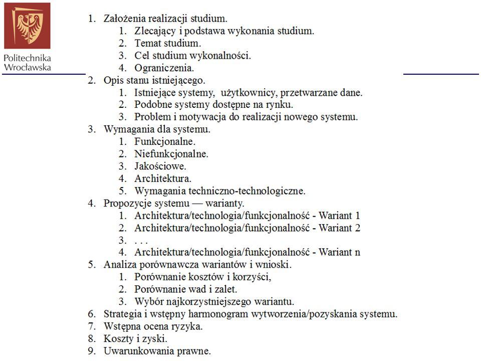 Studium wykonalności Raport wykonalności