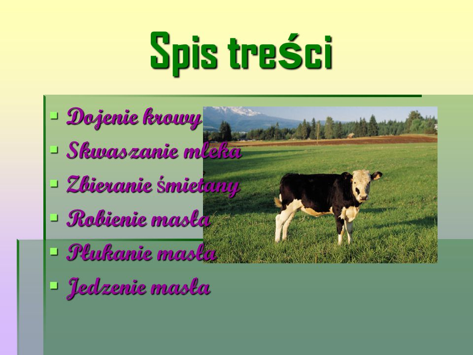 Dojenie krowy Gdy chcemy zrobić masło, najpierw musimy podoić krowę.