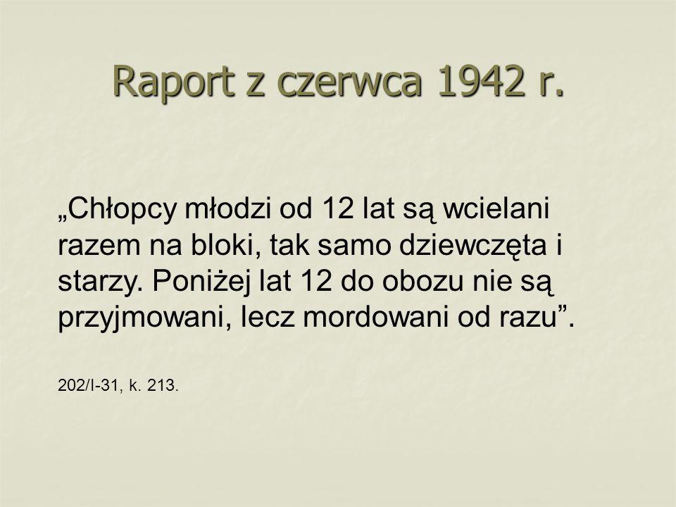Raport z czerwca 1942 r.