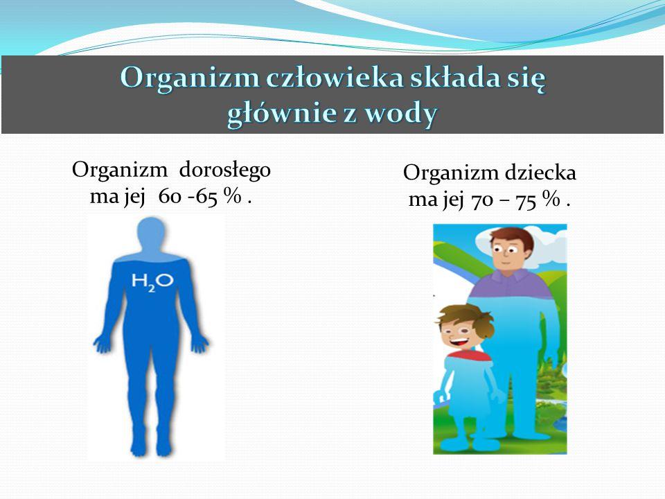 Organizm dorosłego ma jej 60 -65 %. Organizm dziecka ma jej 70 – 75 %.