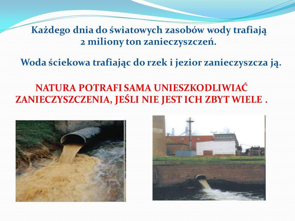 Każdego dnia do światowych zasobów wody trafiają 2 miliony ton zanieczyszczeń. NATURA POTRAFI SAMA UNIESZKODLIWIAĆ ZANIECZYSZCZENIA, JEŚLI NIE JEST IC
