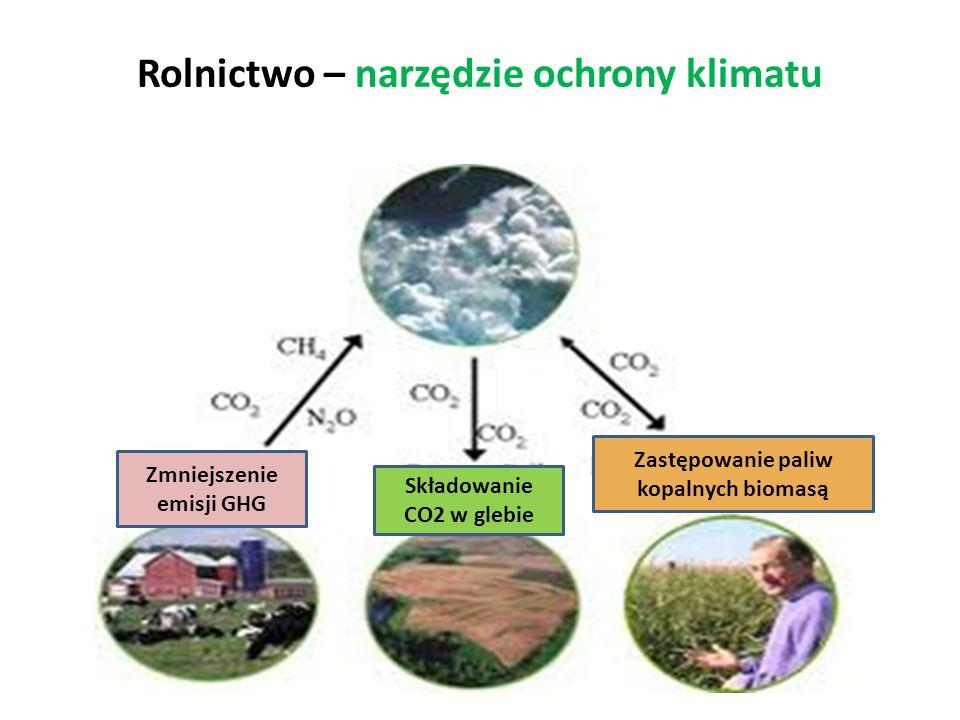 Rolnictwo – narzędzie ochrony klimatu Zmniejszenie emisji GHG Składowanie CO2 w glebie Zastępowanie paliw kopalnych biomasą