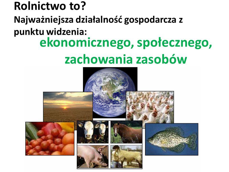 Rolnictwo – najważniejsza działalność gospodarcza 60% ludności świata na roli utrzymuje się z rolnictwa Ponad połowa powierzchni ziemi jest wykorzystywana do celów rolniczych Ilość oraz jakość produkcji i konsumpcji mają największy wpływ na zdrowie społeczeństw i na stan środowiska