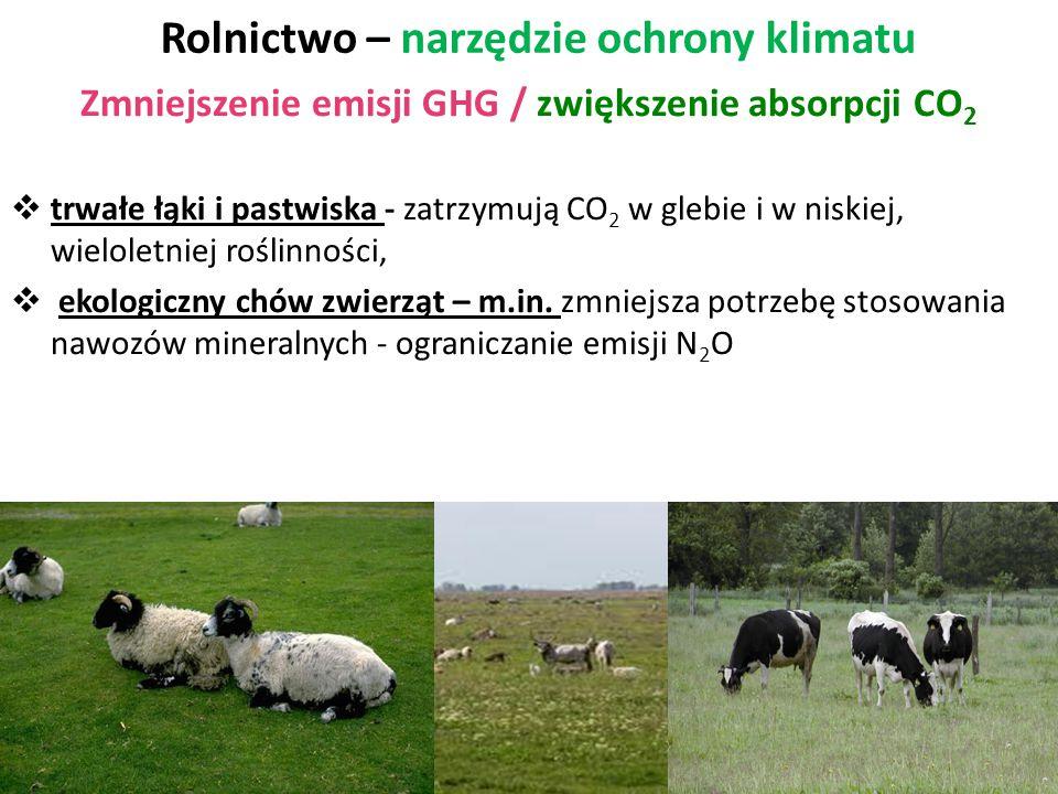 Rolnictwo – narzędzie ochrony klimatu Zmniejszenie emisji GHG / zwiększenie absorpcji CO 2  trwałe łąki i pastwiska - zatrzymują CO 2 w glebie i w ni