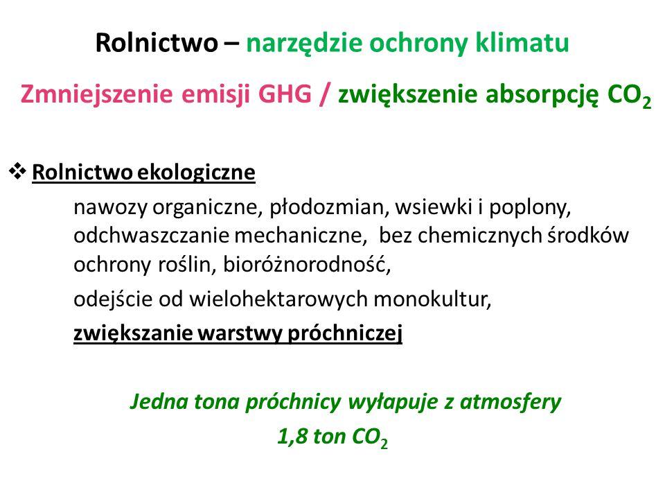 Rolnictwo – narzędzie ochrony klimatu Zmniejszenie emisji GHG / zwiększenie absorpcję CO 2  Rolnictwo ekologiczne nawozy organiczne, płodozmian, wsie