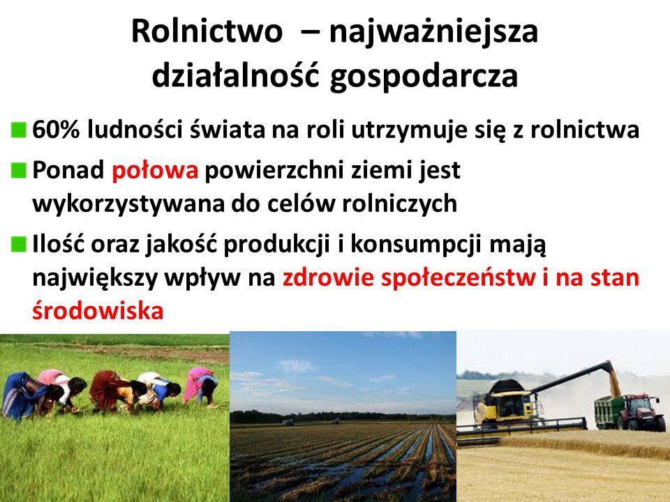 Rolnictwo – najważniejsza działalność gospodarcza 60% ludności świata na roli utrzymuje się z rolnictwa Ponad połowa powierzchni ziemi jest wykorzysty