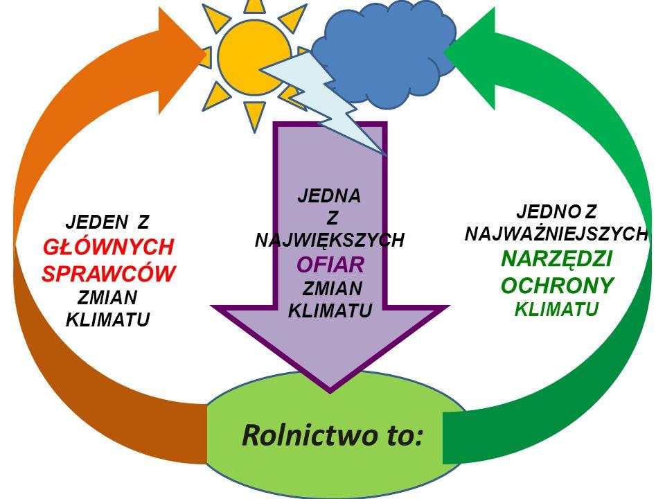Rolnictwo sprawca zmian klimatycznych  Biologiczne procesy związane z produkcją rolną są źródłem emisji dwóch podstawowych gazów cieplarnianych: metanu (CH 4 ) i podtlenku azotu (N 2 O)  Mają one odpowiednio 21 i 310 razy silniejszy wpływ na ocieplanie się klimatu niż CO2
